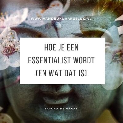 Hoe je een essentialist wordt